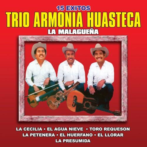 Play & Download 15 Exitos by Trio Armonia Huasteca | Napster