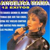 12 Exitos von Angelica Maria