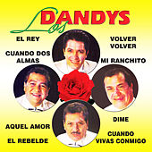 Play & Download 10 Super Exitos by Los Dandys | Napster