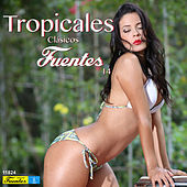 Play & Download Tropicales Clásicos Fuentes 14 by Various Artists | Napster