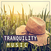 Tranquility Music – Calming Sounds, Serenity Music, Nature by Soulive