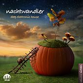 Nachtwandler, Vol. 16 - Deep Electronic House by Various Artists