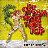 The Cream Rises to the Top (Best of Murena Records) by Various Artists