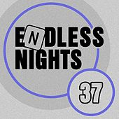Endless Nights, Vol.37 by Various Artists