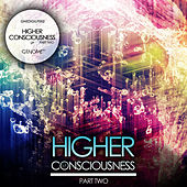 Higher Consciousness Part 2 by Various Artists