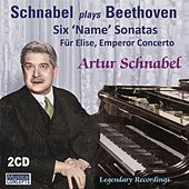 Play & Download Schnabel Plays Beethoven by Artur Schnabel | Napster