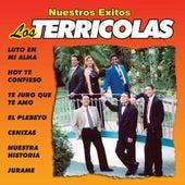 Play & Download Nuestros Exitos by Los Terricolas | Napster