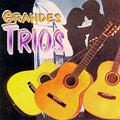 Play & Download Grandes Trios by Various Artists | Napster