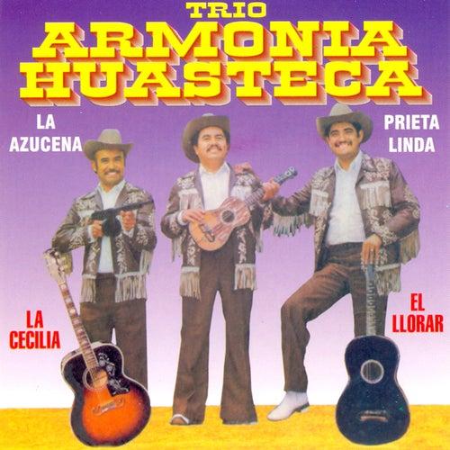 Play & Download 12 Grandes Exitos by Trio Armonia Huasteca | Napster