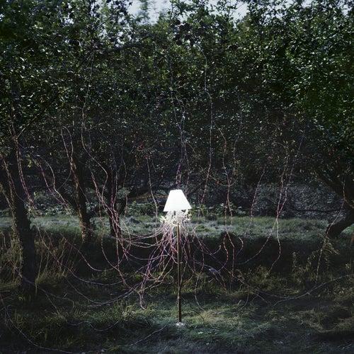 IM U (Tomas Barfod Remix) by Beacon