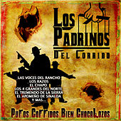 Los Padrinos del Corrido by Various Artists