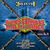 Puros Corridos Malandrines Vols. 3 y 4 by Various Artists
