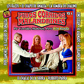 Puros Corridos Malandrines Vol. 4 by Various Artists