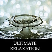 Ultimate Rain & Water Relaxation Sessions - 20 Soothing Water Melodies to Guide You Through Stress & Anxiety Relief, Deep Meditation, Sleep and Self-Improvement by Yoga Music