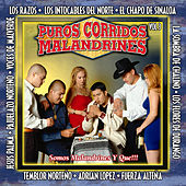 Puros Corridos Malandrines Vol. 3 by Various Artists