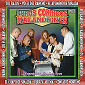 Puros Corridos Malandrines Vol. 2 by Various Artists