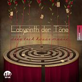 Labyrinth der Töne, Vol. 16 - Deep & Tech-House Music de Various Artists
