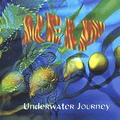 Underwater Journey by Kelp