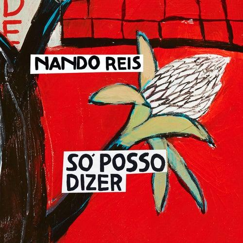 Play & Download Só Posso Dizer by Nando Reis   Napster
