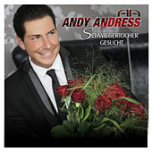 Play & Download Schwiegertochter gesucht by Andy Andress | Napster