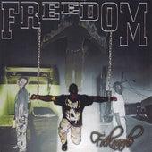 Freedom by Freknardo