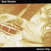 Guinea Pigs by Saul Zonana