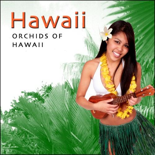 Orchids Of Hawaii - Hawaiian Guitar by Harry Kalapana