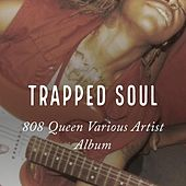 Play & Download Trapped Soul by Various Artists | Napster