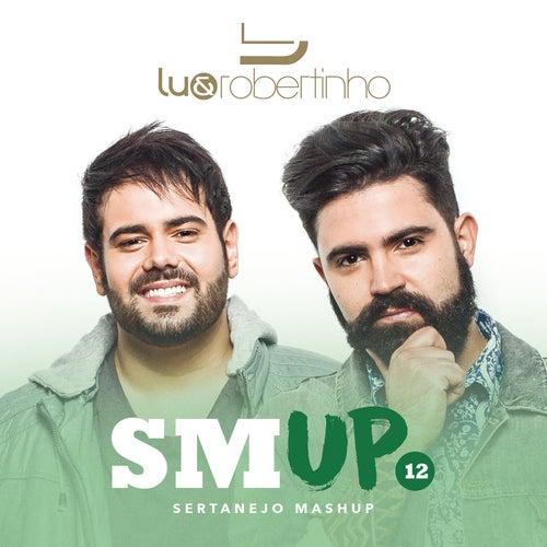 Sertanejo Mashup 12 de Lu & Robertinho