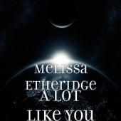 A Lot Like You by Melissa Etheridge