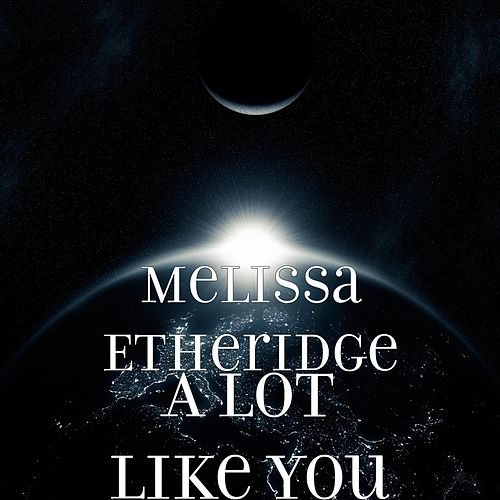 A Lot Like You by Melissa Etheridge