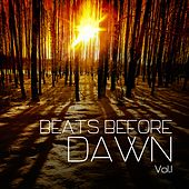 Beats Before Dawn, Vol. 1 by Various Artists