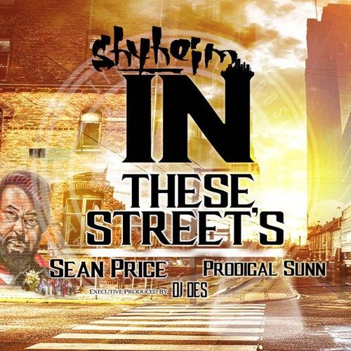In These Streets (feat. Sean Price, Prodigal Sunn & DJ Des) by Shyheim