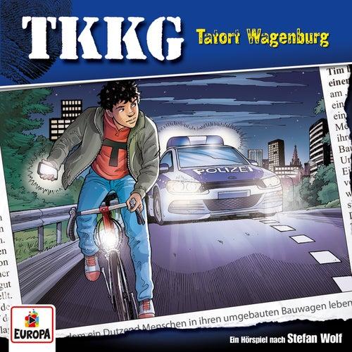 196/Tatort Wagenburg von TKKG