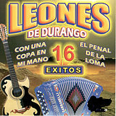 Play & Download 16 Exitos by Los Leones de Durango | Napster