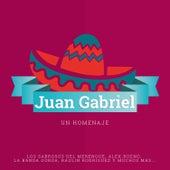 Juan Gabriel un Homenaje by Various Artists