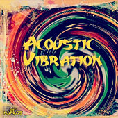 Play & Download Acoustic Vibration by Various Artists | Napster