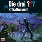 175/Schattenwelt von Die Drei ???