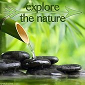 Explore the Nature by Various Artists