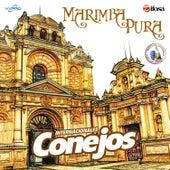Play & Download Marimba Pura. Música de Guatemala para los Latinos by Internacionales Conejos  | Napster