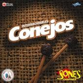 Sones Chapines. Música de Guatemala para los Latinos by Internacionales Conejos