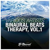Binaural Beats Therapy, Vol. 1 by Various Artists