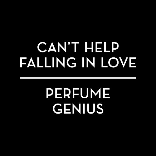 Play & Download Can't Help Falling In Love by Perfume Genius | Napster
