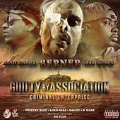 Play & Download Guilty By Association 2: Criminal Enterprise by San Quinn | Napster