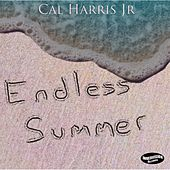 Endless Summer by Cal Harris Jr.