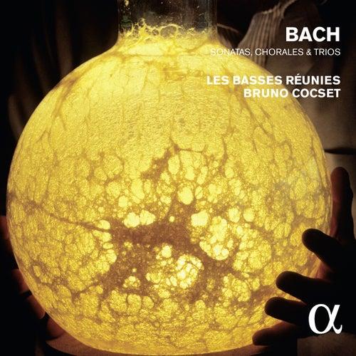 Bach: Sonatas, Chorales & Trios by Bruno Cocset