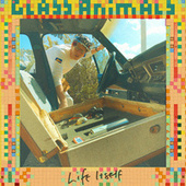 Life Itself (Roosevelt Remix) by Glass Animals