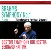 Brahms: Symphony No. 1; Nänie by Various Artists