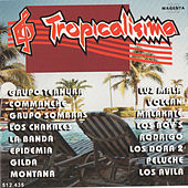 Play & Download Tropicalisima by Various Artists | Napster