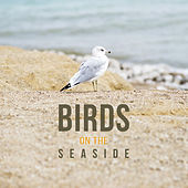 Play & Download Birds on the Seaside – Fabulous Nature Music of Birds and Ocean Waves, Best Relaxing Music for Feel Energy, Calming Sounds of New Age Music by Sounds of Nature Relaxation | Napster